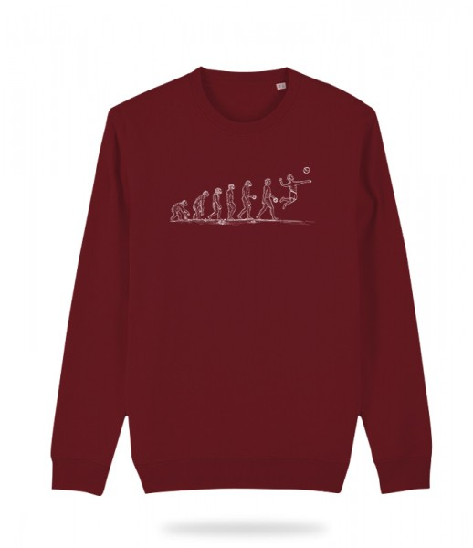Evolution Sweater